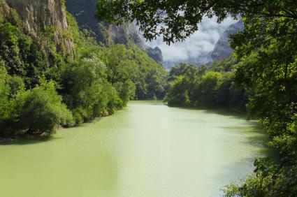 Amazonia River